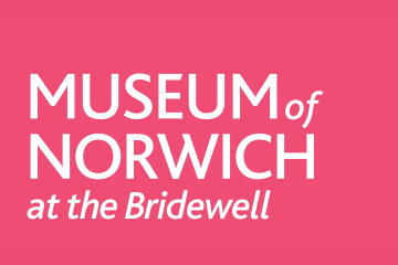 Norwich Museum Thumb